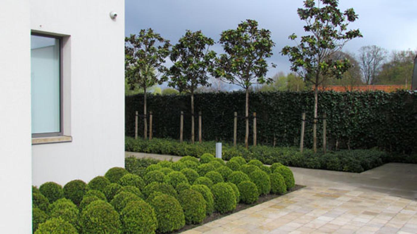 Moderne tuinen l moderne tuinarchitectuur l tuinarchitect for Tuin uittekenen